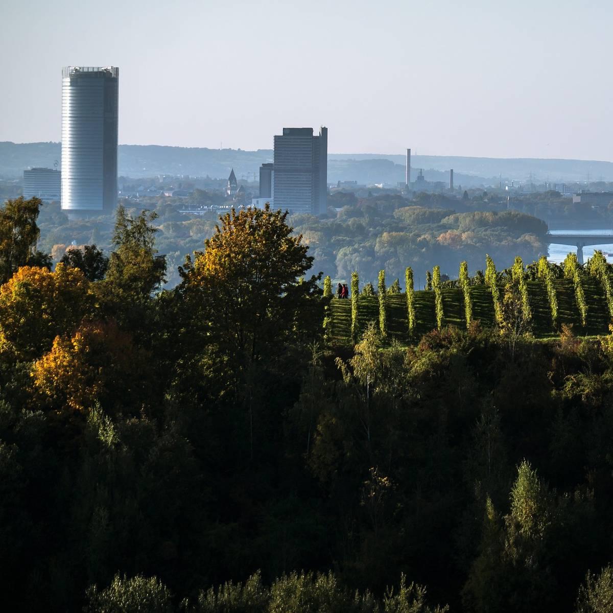 Rhein-Sieg-Kreis Corona