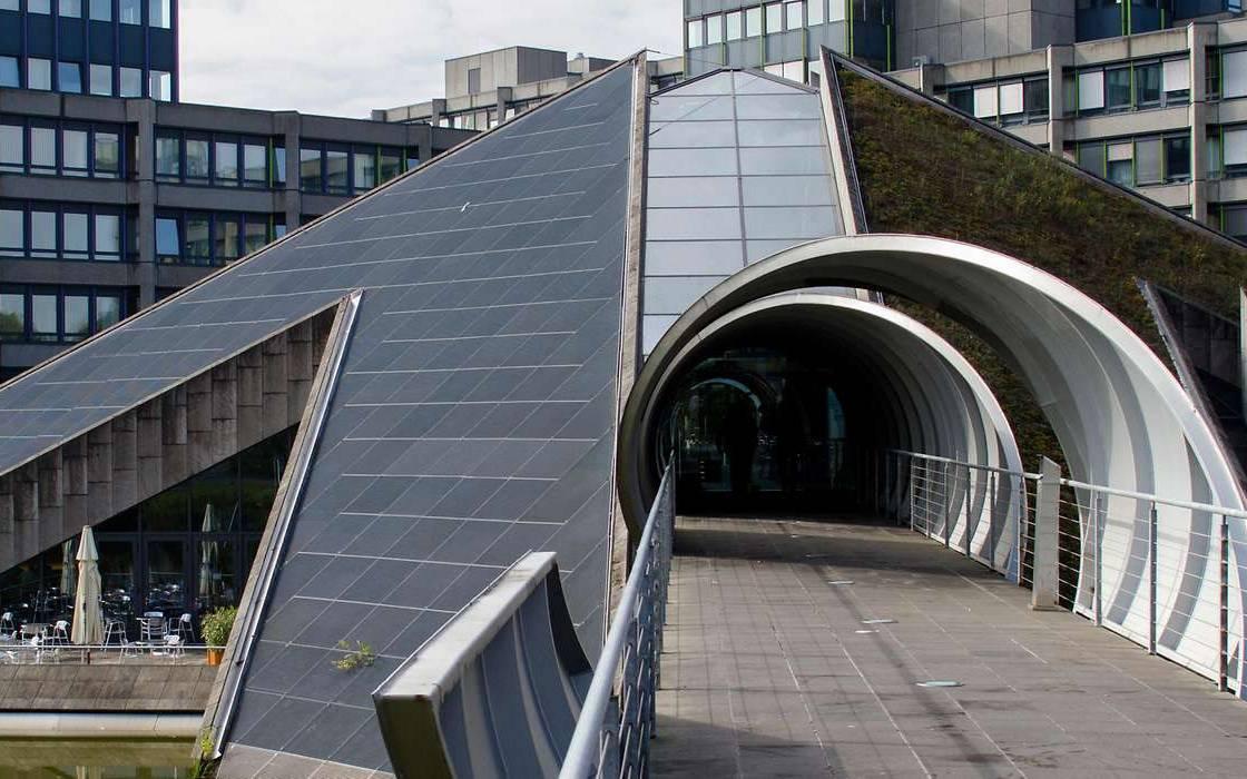 Webcam Bonn Rhein